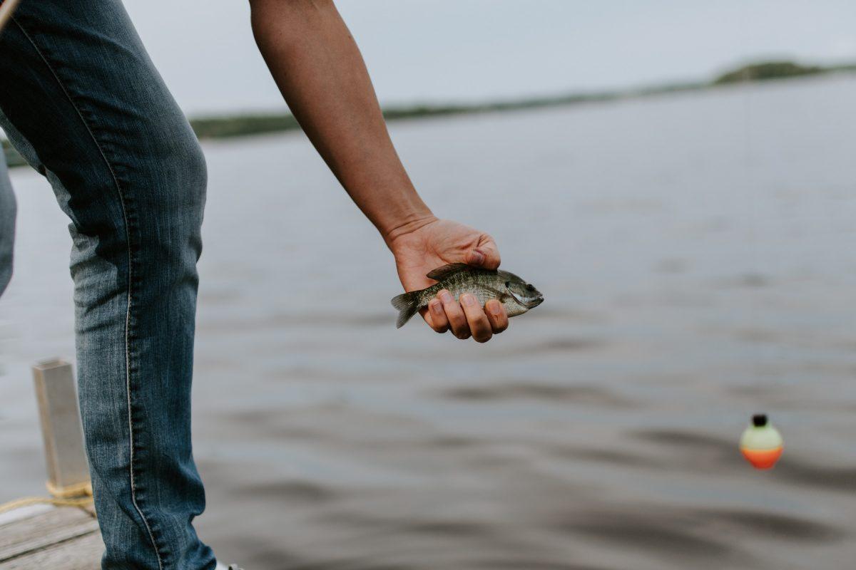 pêcher responsable