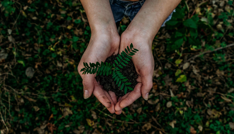 Ces gestes du quotidien pour préserver l'environnement